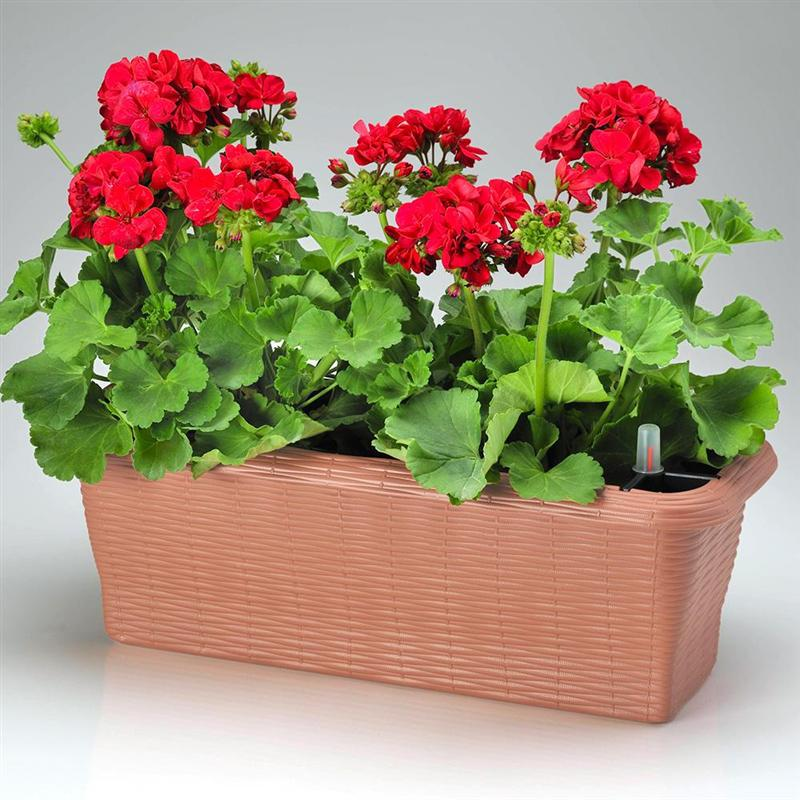 FLOWER BOX PAGLIA SELF WATERING