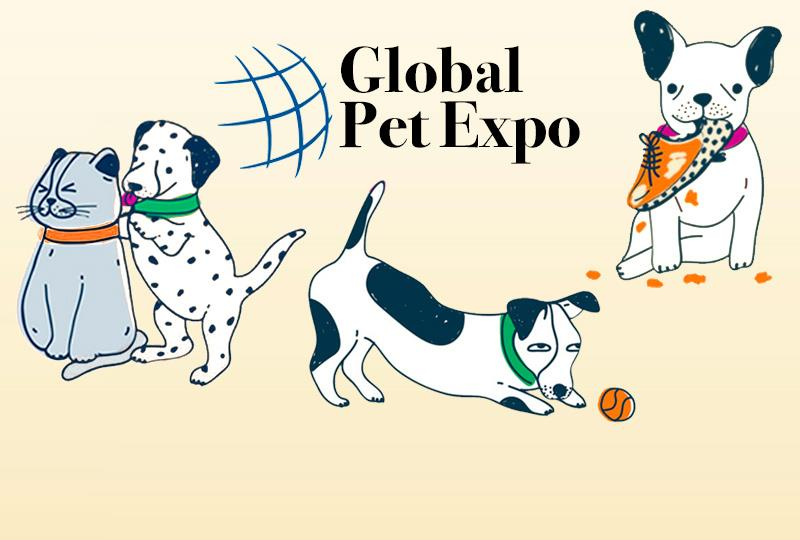 GLOBAL PET EXPORT 2020